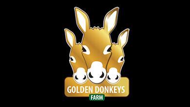 Golden Donkeys Farm Logo