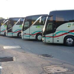 Hadjilikos And Sons Tourist Buses