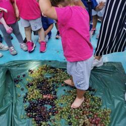 Privilege Kindergarten Activities