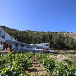 House In Troodos Kyperounta Vineyard View