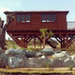 Timbwer Wood Summer Houses