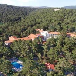 Corona Travel And Tours Forest Park Hotel Platres
