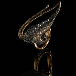 Hepsera Collection Black Diamonds Champagne Diamonds And Red Gold