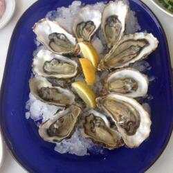 Psarolimano Oysters