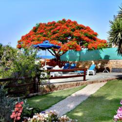 Rododafni Beach Apartments Gardens
