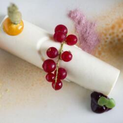 Sans Frontieres Dessert
