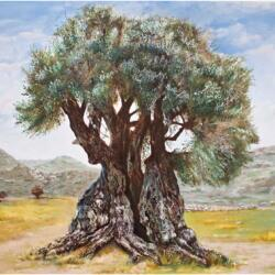 Peter S Gallery Greek Cypriot And International Artists