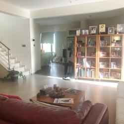 Grandeur Furnished 4 Bedroom House For Sale With Private Pool Alethriko Larnaca
