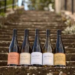 M Chapoutier Wines