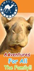 Camel Park E.P Mazotos