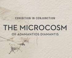 The Microcosm of Adamantios Diamantis