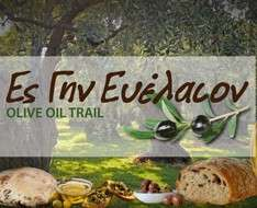 Walk through the olive oil land - Olive oil trail