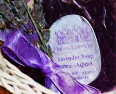 Lavender Festival - Rural Festivals 2017