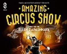 Amazing Circus Show